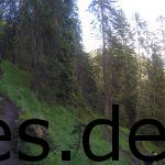 Der ewige lange Pfad am letzten Berg. Hier eine Impression nach meiner Pause auf dem Baumstumpf.