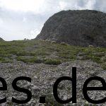 In den Alpen laufen immer Tiere frei rum. Diesmal waren es Schafe. Copyright: Daniel Katzberg
