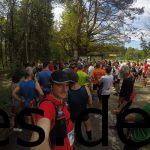 Der Start des Teutoburger Waldmarathons 2017. Ein großer Haufen wartet auf den Start. (Copyright: Daniel Katzberg)
