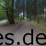 Km 3, kurz nach der Hütte auf dem Weg zum Tönsberg. Die Beschilderung (rote Pfeile) war zu jedem Zeitpunkt gut. (Copyright: Daniel Katzberg)