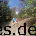 Bei Km 15 geht es den Tönsberg hoch, dem wohl schwersten Anstieg des Hermannslaufes. (Copyright: Daniel Katzberg)