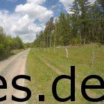 Bei Km 14, in der zweiten Schleife lief man an Waldrändern entlang. (Copyright: Daniel Katzberg)