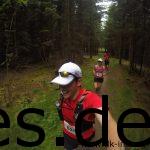 Ein Blick bei Km 6,5 hinter mir. Wir laufen immer noch einen Singletrail durch den Wald. (Copyright: Daniel Katzberg)
