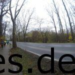 Km 4: Wir laufen eine Straße entland und zum Schloss hin. (Copyright: Daniel Katzberg)
