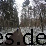 Nach gut 5,8 km gibt es ein langes, gerades Stück im Wald. Ich mag diesen Blick aus Ferne, Wald und Schnee. (Copyright: Daniel Katzberg)