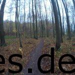 Km 24: Zurück auf dem Singletrail und auf dem Weg zum Schloss. Diesmal: Alles leer! (Copyright: Daniel Katzberg)
