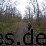 Km 35: Sina läuft und läuft. Hier auf dem Weg zum Wald zum letzten Verpflegungspunkt. (Copyright: Daniel Katzberg)
