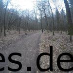 Km 15,5. Auf geht es zügig zur siebten Klippe. Viele Läufer sind es nicht mehr um mich herum. (Copyright: Daniel Katzberg)