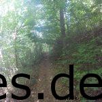 Km 20: Ein Beispiel der vielen Single-Trails auf diesem Lauf. Wir sind hier schon alleine, doch ach ... die Strecke! (Copyright: Daniel Katzberg)