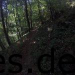 Km 24 - Der lange Downhill in seinen Anfangsmomenten. (Copyright: Daniel Katzberg)
