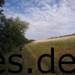 Km 14,5: Es geht an Feldern nach der Streckentrennung entlang. (Copyright: Daniel Katzberg