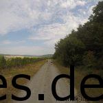 Bei Km 24 geht es etliche Kilometer oberhalb der Weinberge entlang. (Copyright: Daniel Katzberg)